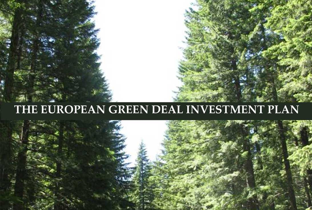 The European Green Deal investment plan